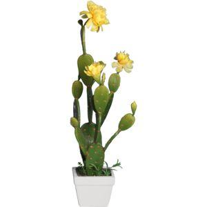 ligne deco cactus en fleur 46cm avec pot c ramique pas cher achat vente petite d co d. Black Bedroom Furniture Sets. Home Design Ideas