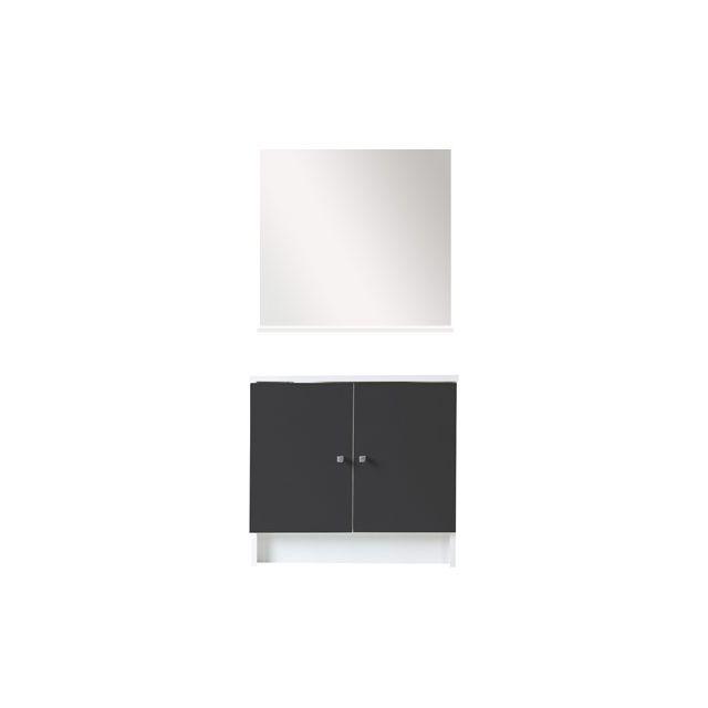 Ensemble miroir + meuble sous vasque coloris gris anthracite