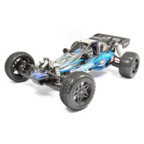 FTX - SideWinder Dune Buggy 2WD Brushed RTR
