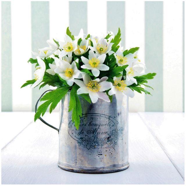 promobo - tableau toile cadre zen fleur blanche pot de fleur