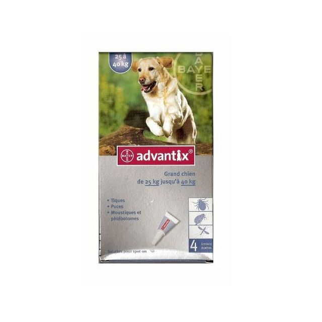 Advantix Pipettes anti-puces grand chien >25kg