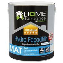 Home Tendance - Peinture façade universelle Hydro Façadlith hydropliolite 2.5 L gris clair mat - by Renaulac
