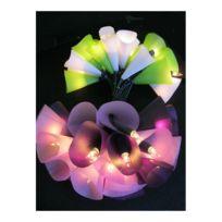 Pa Design - Guirlande Lumineuse Belettes Violet Vert
