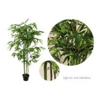 No Name - Plante artificielle - Bambou hauteur 140cm - Tige en véritable Bambou