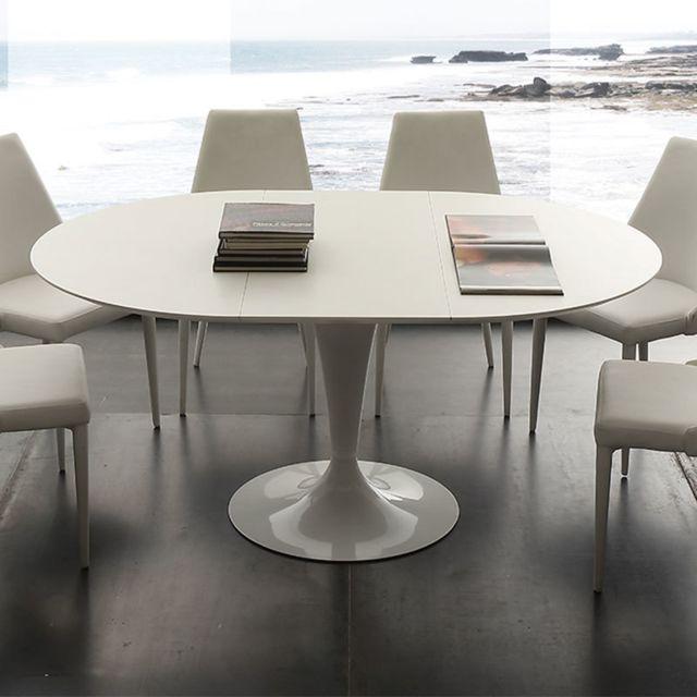 Grande Table A Manger Avec Rallonge: Table à Manger Ronde Blanche Avec Rallonge