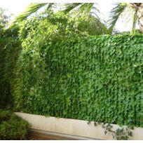 JET7GARDEN - Haie artificielle jeunes feuilles de lierre en rouleau