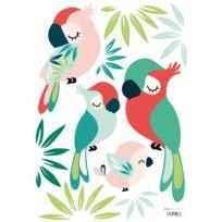 Lilipinso - Tropica - Stickers A3 - Perroquets