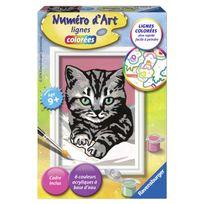 Ravensburger - Peinture au numéro : Numéro d'Art lignes colorées : Joli chaton gris
