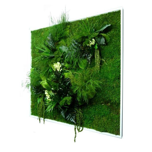 d co maison tableau mur v g tal stabilis carr xl 80x80 cm cadre d coratif blanc pas cher. Black Bedroom Furniture Sets. Home Design Ideas