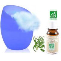 Touslescadeaux - Diffuseur Arômes huiles essentielles - Vase en Verre - Variation de couleurs Led + 1 Huile Essentielle Eucalyptus Certifiée Bio
