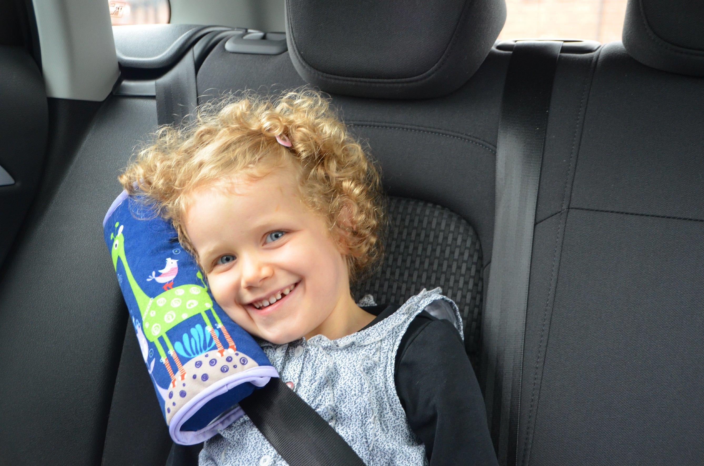 Fourreau de ceinture voiture - CPC01