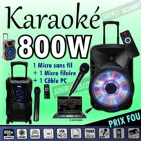 Ibiza Sound - Karaoké 800w enceinte amplifiée portable - usb mp3 - sd - bluetooth - tuner - 2 micros pa dj led sono pack famille enfants fête
