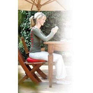 sissel coussin ergonomique pour le dos sitfit pas cher achat vente accessoires. Black Bedroom Furniture Sets. Home Design Ideas
