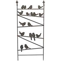 LA GRANDE PRAIRIE - Treilli famille d'oiseaux