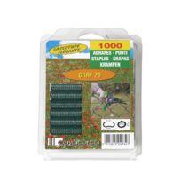 Cavatorta - Agrafes 20/1000 vert sous coque