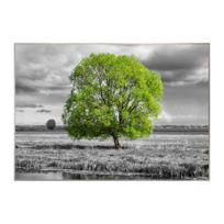 Tableau déco Bcn 70x100 - Paysage Arbre vert