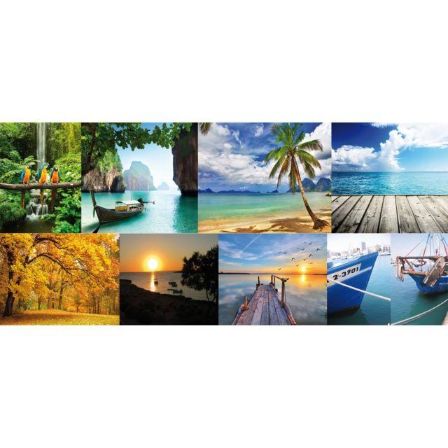 Lineafix Film décoratif vitrostatique Eden - 150 x 70 cm - Multicolore