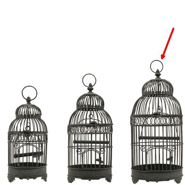 L'ORIGINALE Deco Grande Cage à Oiseaux en fer Ronde Gris 57 cm x ø25.50 cm