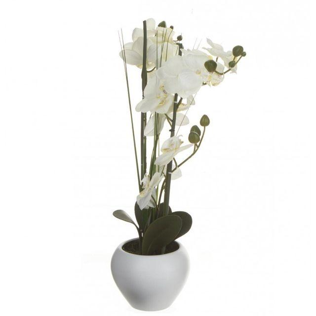 Composition Florale Orchidée & Vase Céramique 53cm Blanc