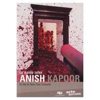 Arte Video - Le Monde selon Anish Kapoor