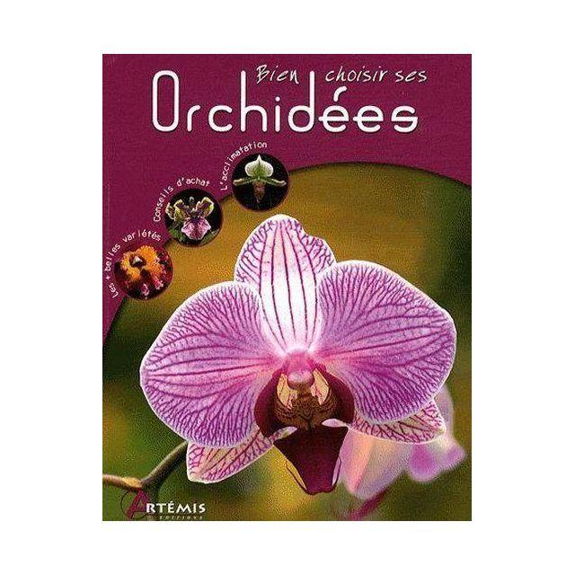 Artemis - Orchidées - pas cher Achat / Vente Jardin - RueDuCommerce