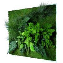 FLOWERBOX - Tableau nature carré XL avec plantes stabilisées 80x80cm