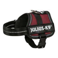 Julius K9 - Julius-k9 Harnais Power Baby 2/XS?S- 33?45cm bordeaux pour chien