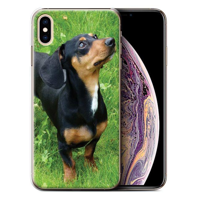 coque iphone 5 teckel