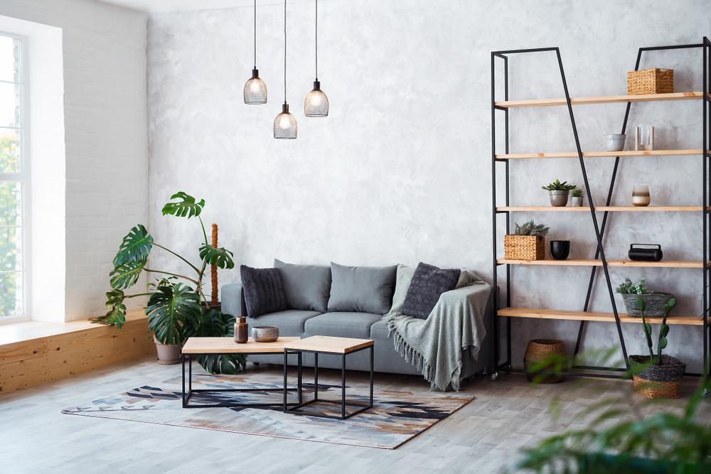 plante-maison