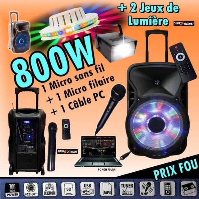 Ibiza Sound Karaoké enceinte amplifiée 800w portable - usb mp3 - sd - bluetooth - tuner - 2 micros - 2 jeux de lumière - câble pc pa