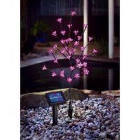 Esotec - Arbuste a fleurs rose lilas solaire