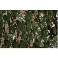 Catral - Treillis extensible décoratif - 1 x 2m