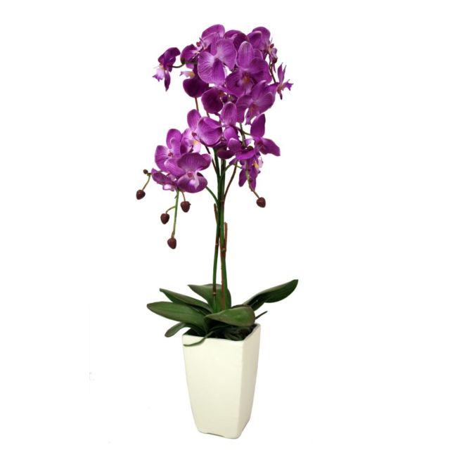 LIGNE DECO Orchidée blanche en pot noir