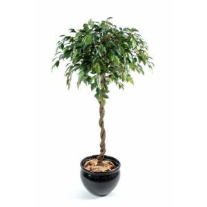 Artificielflower arbre artificiel ficus boule natasja for Plante arbre interieur