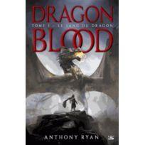 Bragelonne - dragon blood tome 1 ; le sang du dragon