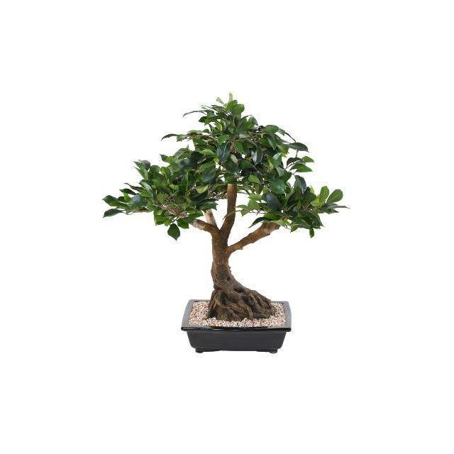 artificielflower bonsa artificiel arbre miniature ficus en coupe plante d 39 int rieur h. Black Bedroom Furniture Sets. Home Design Ideas