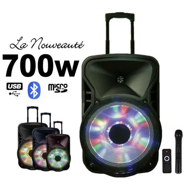 Ibiza Sound Enceinte mobile amplifiée 700w avec batterie rechargeable autonomie 3-5h pa sono dj led sport hifi bar