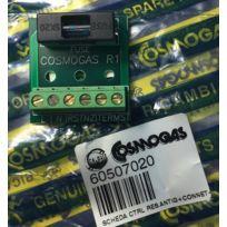 Cosmogas - 60507020 - Circuit de contrôle et alimentation - résistance antigel