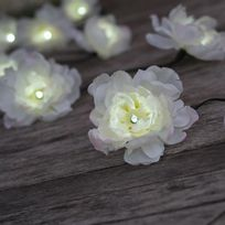 Smart Garden - Guirlande solaire fleur 10 Led longueur 5.8m
