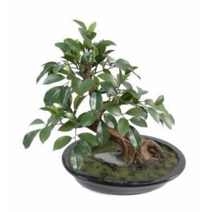 Artificielflower arbre artificiel miniature bonsai ficus for Arbre artificiel exterieur pas cher