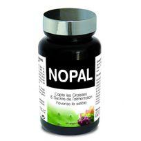 Ineldea - Nopal- Capteur de Sucre et de graisse