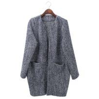 Wewoo - Vestes et manteaux Femme Manteau d hiver Femmes Automne Mode  Élégant Long Femelle 4a96c642546