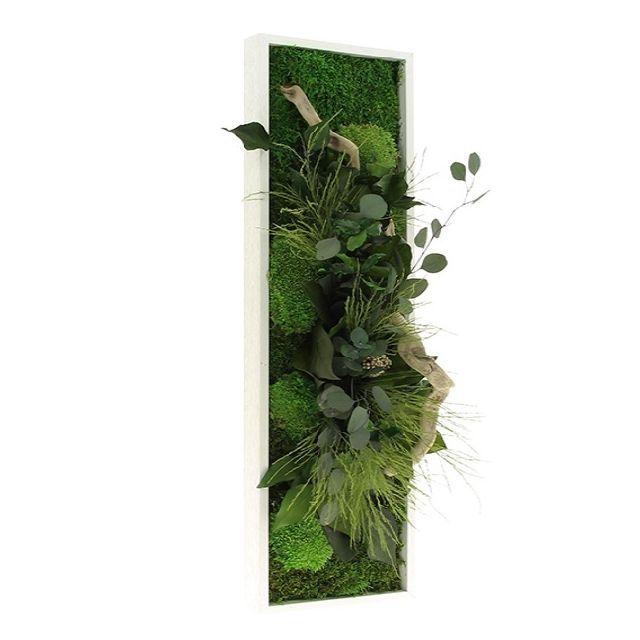 naturalis tableau v g tal stabilis panoramique 20x70 flowerbox verifier le produit la. Black Bedroom Furniture Sets. Home Design Ideas