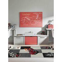 Les Tapis - Tapis Race Voiture Tapis Moderne par gris 80 x 150 cm