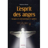 Anagramme - l'esprit des anges ; arcanes et correspondances spirites