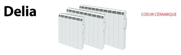 carrera radiateur inertie 1000w d lia pas cher achat vente radiateur inertie. Black Bedroom Furniture Sets. Home Design Ideas