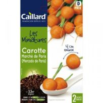 - Graines mini carottes