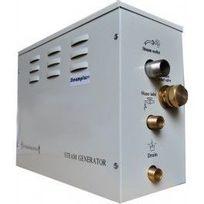 Desineo - Générateur vapeur Steamplus 4Kw pour Hammam