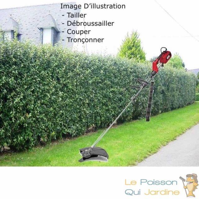 Le Poisson Qui Jardine Outil Multi-Tàches Électrique 4 en 1, Tronçonner, Tailler, Débroussailler