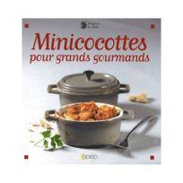 Saep - Livre Recettes Minicocottes F/BOIS 8023
